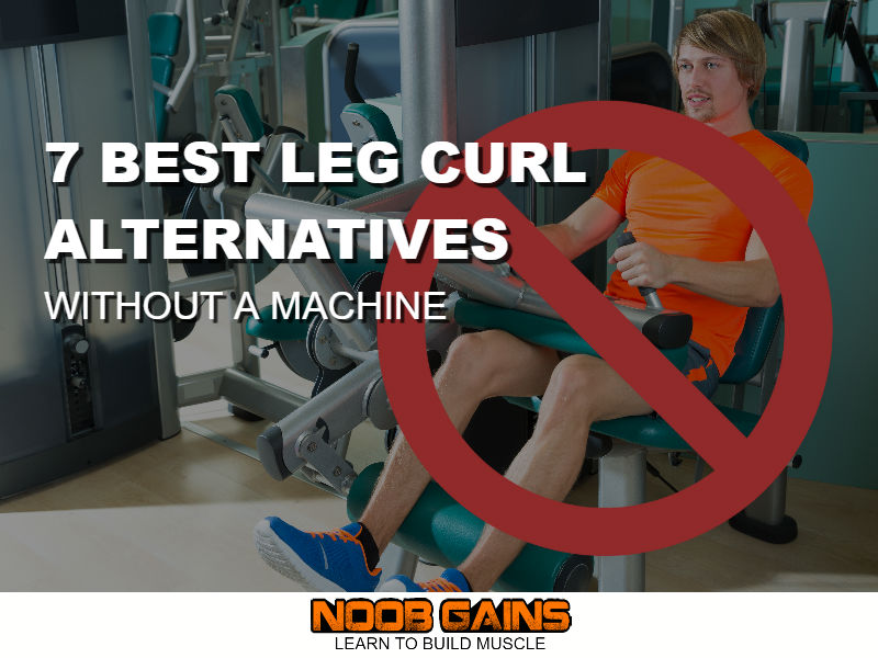 Best leg curl alternatives without machine image