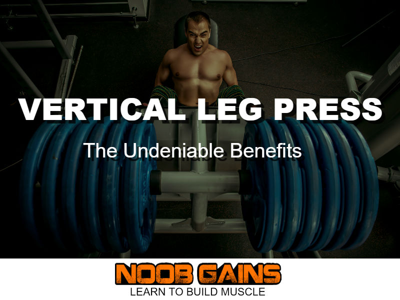 Vertical leg press benefits image