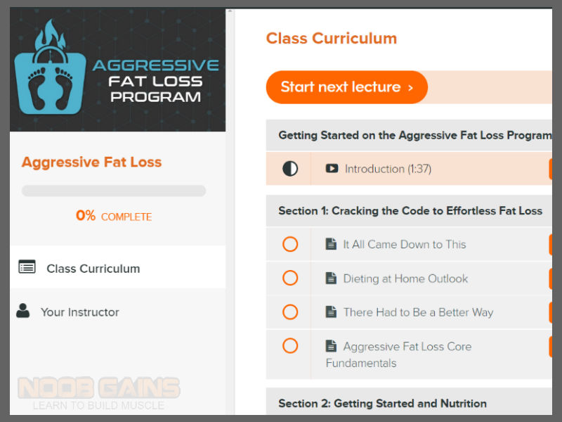 Aggressive fat loss pdf