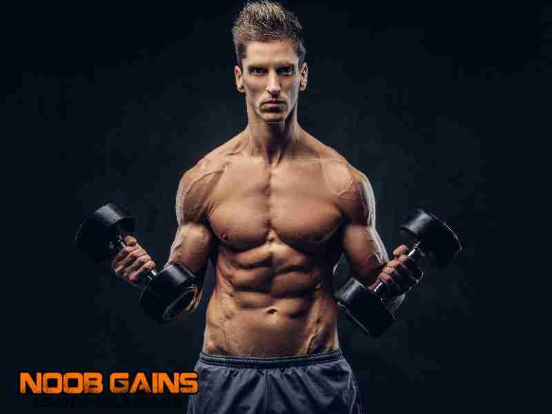 Shredded body workout plan