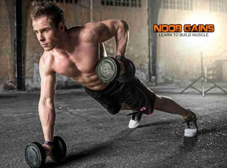 Kinobody physique image