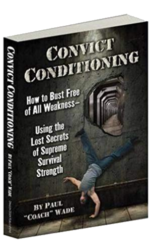 Convict conditioning image