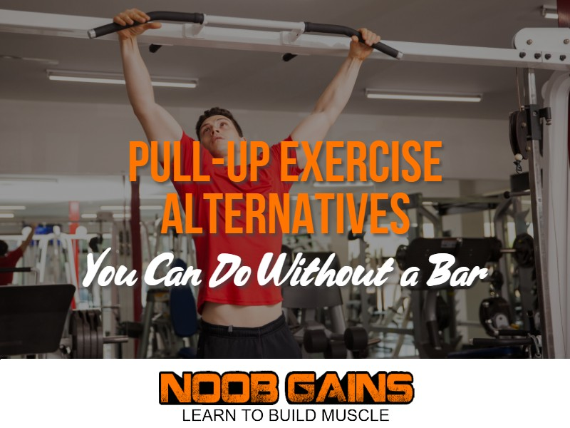 Alternative exercise for pull ups image
