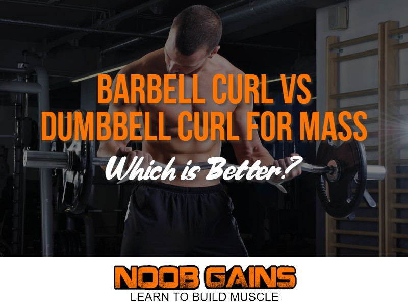 Barbell curl vs dumbbell curl image