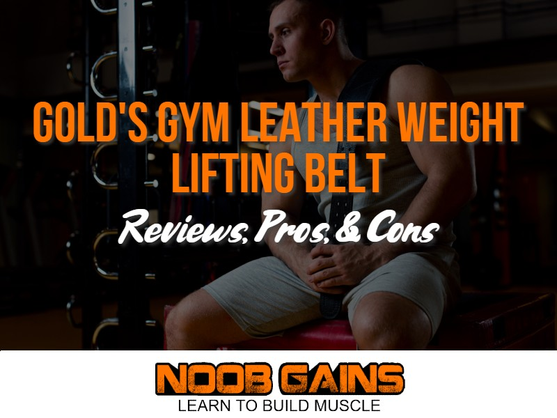 Golds gym weight lifting belt image