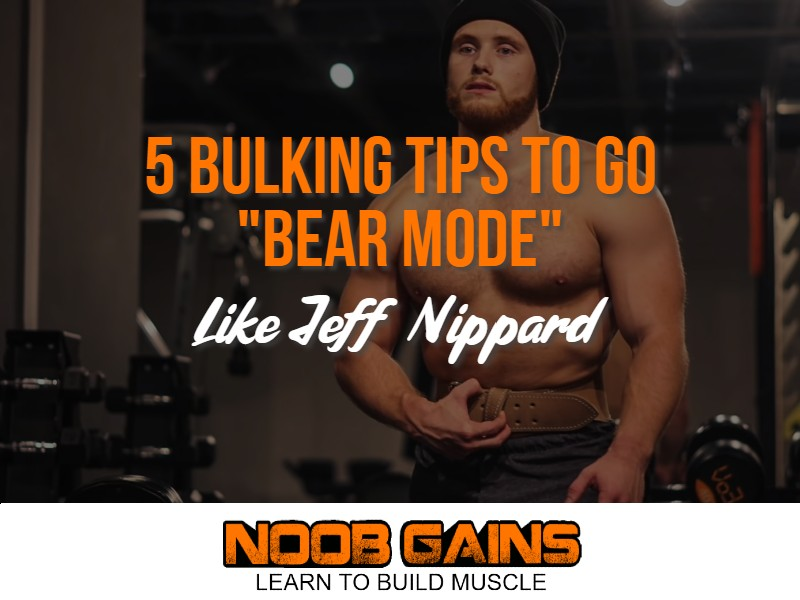 Jeff nippard bear mode image
