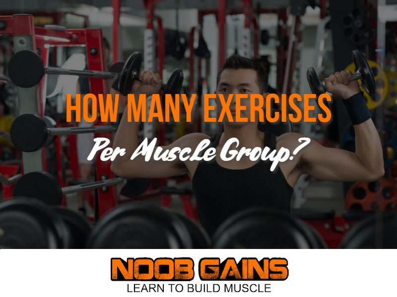 How many exercises per muscle group image