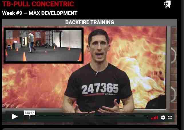 Phase 3 - max development image