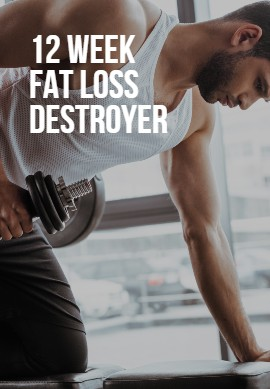 12 week fat loss destroyer image