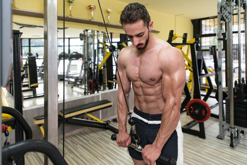 Aesthetic triceps workout image
