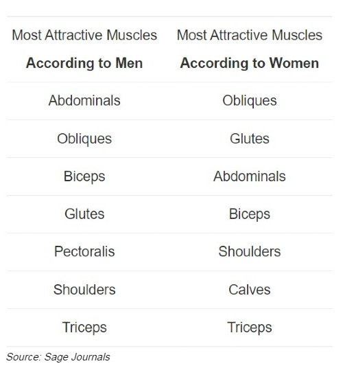 Most attractive muscles table